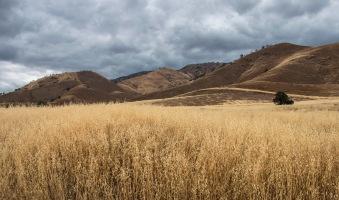 California Landscape