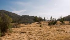 California Hills in Drought