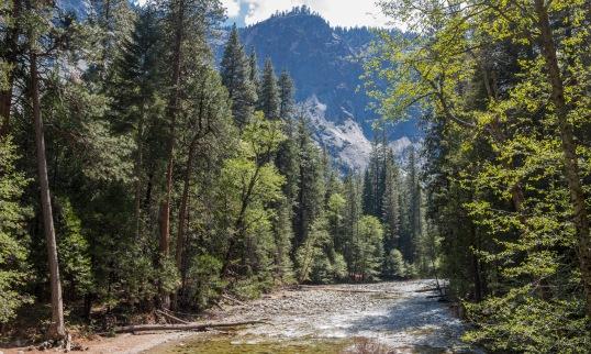 King's Canyon River