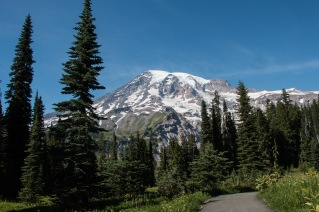 Paradise Trails Mount Rainier